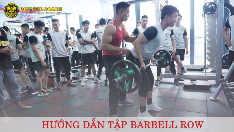 Tập Barbell Row